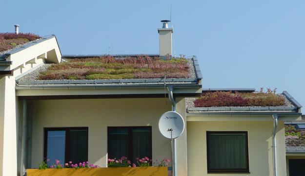 ucelove strechy